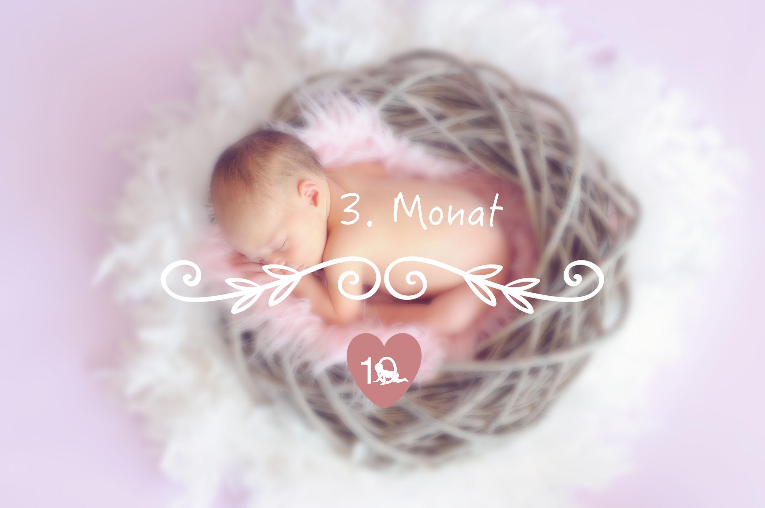 das baby im 3 monat alles ber babys entwicklung im 3 lebensmonat. Black Bedroom Furniture Sets. Home Design Ideas